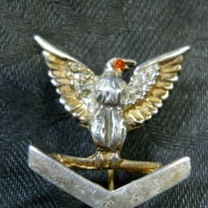 Other - Eagle bronze pin possibily Military Marked